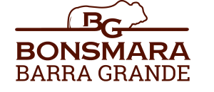 Bonsmara Barra Grande Logo